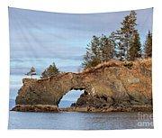 Halibut Cove Rock Formation Kenai Peninsula Alaska Tapestry