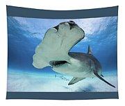 Hammerhead Shark Tapestry