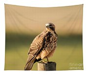 Hawk On The Edge Of A Field Tapestry