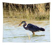 Heron Capturing A Fish Tapestry