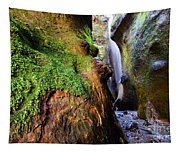 Hidden Falls Sombrio Beach 2 Tapestry