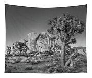 Hidden Valley Rock Tapestry