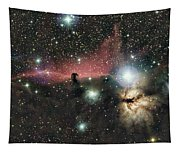 Horsehead And Flame Nebulae Tapestry