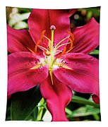 Hot Pink Day Lily Tapestry