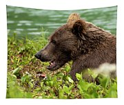 Hungry Bear Tapestry