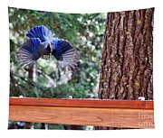 Incoming Steller's Jay Tapestry