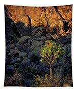 Joushua Sunset 1 Tapestry