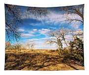 Land Of Enchantment Tapestry