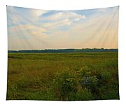 Salt March Landscape  Tapestry