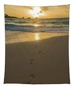 Leading To The Light Coastal Sunrise Tapestry