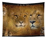 Lions No 02 Tapestry