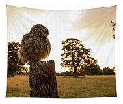 Little Owl Sunset Tapestry