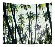Low Angle View Of Coconut Palm Trees Tapestry