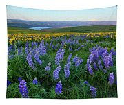 Lupines At Sunrise Tapestry