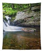 Mad River Falls Tapestry by Nathan Bush
