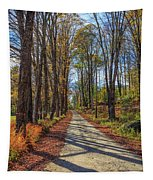 Maple Lane Old Fairgrounds Road Nh Tapestry
