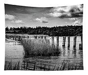 Mccormack's Beach Provincial Park, Black And White Tapestry