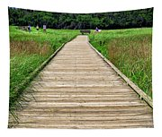 Boardwalk At Mccormack's Beach Provincial Park Tapestry