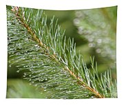 Moist Pine Tree Leaves With Water Droplets. Tapestry