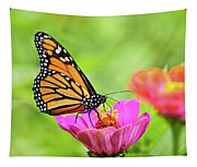 Monarch Butterfly Square Tapestry
