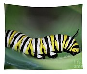 Monarch Caterpillar Macro Tapestry