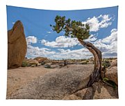 Monolith And Juniper Tapestry