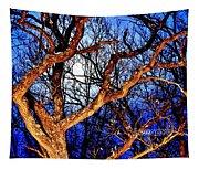 Moonshine 4 Tapestry