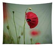 Morning Poppy Flower Tapestry