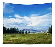 Mount Pagosa Meadow Tapestry