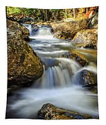 Mountain Stream Waterfall  Tapestry