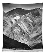 Mountains At Pangong Tapestry by Whitney Goodey