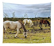 New Forest Ponies On The Heath Tapestry