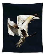 Northern Gannet - Square Crop Tapestry