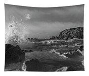Ocean Splash In Black And White Tapestry