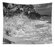Ocean Wave Splash In Black And White Tapestry