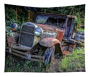 Old Model Aa Ford In The Jungle 2 Tapestry