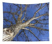 Old Oak Tree Tapestry