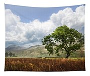 Old Scottish Farmlands Under The Clouds Tapestry