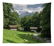 one afternoon in Ballenberg Tapestry