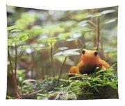 Orange Frog. Tapestry