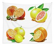Orange Grapefruit Lemon Watercolor Fruit Illustration Tapestry