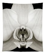 Orchid Tapestry by Dave Bowman