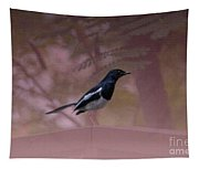 Oriental Magpie-robin With Texture Tapestry