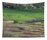 Peaceful Farm In Durango Tapestry