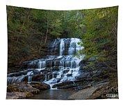 Pearson's Fall And Glen - Saluda North Carolina Tapestry