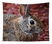 Peter Rabbit Two Tapestry