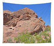 Phoenix Arizona Papago Park  Blue Sky Red Rocks Scrub Vegetation Yellow Flowers 3182019 5340 Tapestry