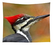 Pileated Woodpecker, 9118 Tapestry