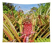 Pineapple Plant Ananas Pico Island Azores Portugal Tapestry