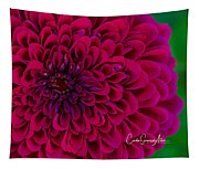 Pinked Zinnia Tapestry